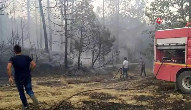 Kütahya'da orman yangını: 3 hektarlık alan yandı 1