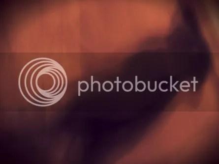 Reflejo de imagenes