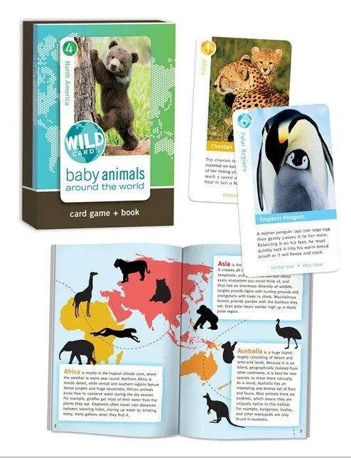Wild Cards - Baby Animals Around the World photo Birdcage-wildcardsbabyanimals_zps7f8bf6b3.jpg