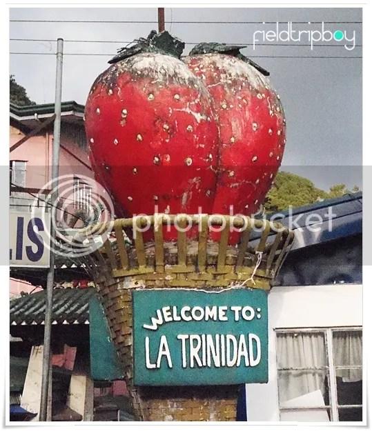 Strawberry Landmark in La Trinidad