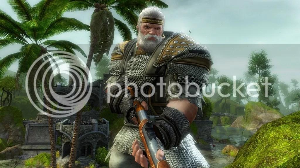Guild Wars 2 | MMO Viking