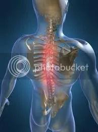 steven rhodes jacksonville chiropractic