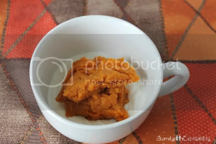 photo YogurtDotsIngredientPumpkinPuree_zps78922685.jpg