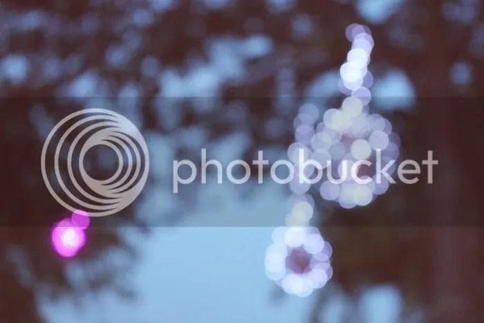 photo 235_zpsb833e39a.jpg