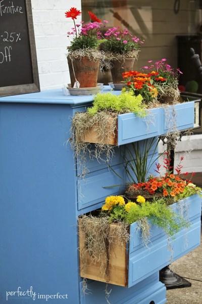 Container gardening in a dresser