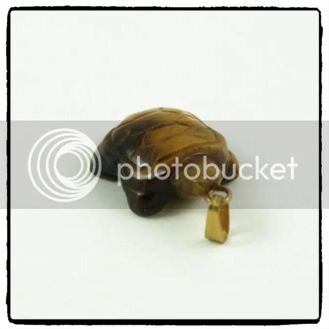 tartaruga-черепаха