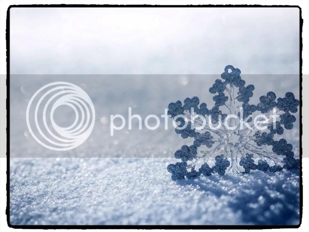 снег-neve
