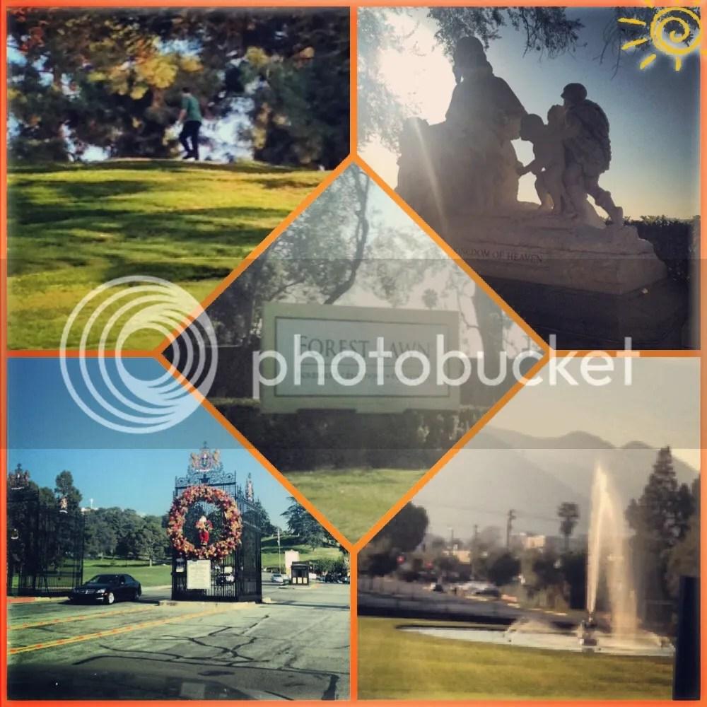 montage photo IMG_6688_zpsf1c6bdff.jpg