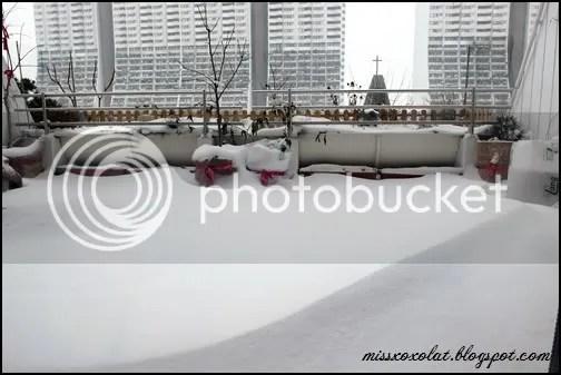 Schnee8