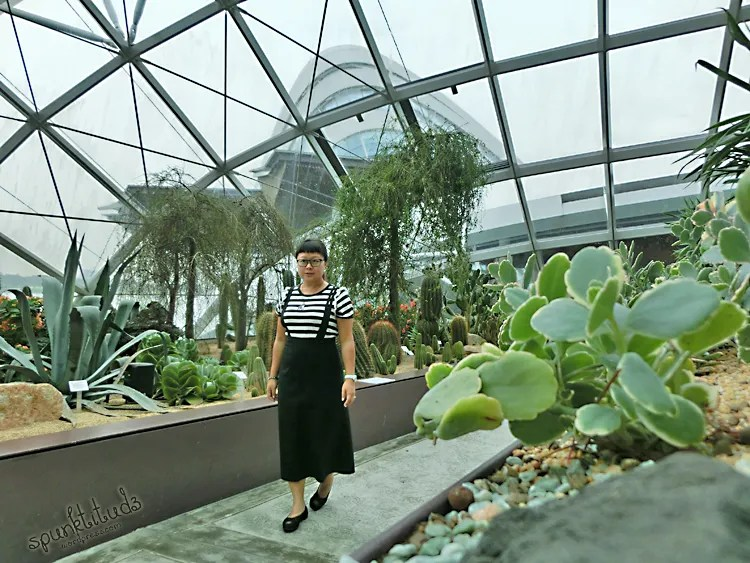 Look of the Day - Black and White at Flower Dome