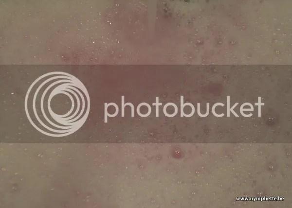 photo DSC_0009_zps08b2207b.jpg