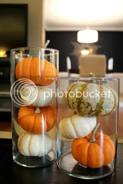 pumpkin in vases