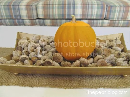 pumpkin and acorns