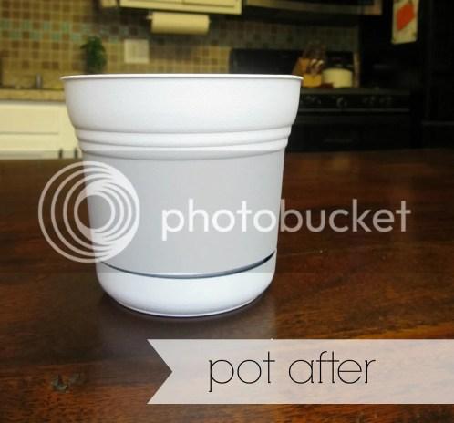 pot after