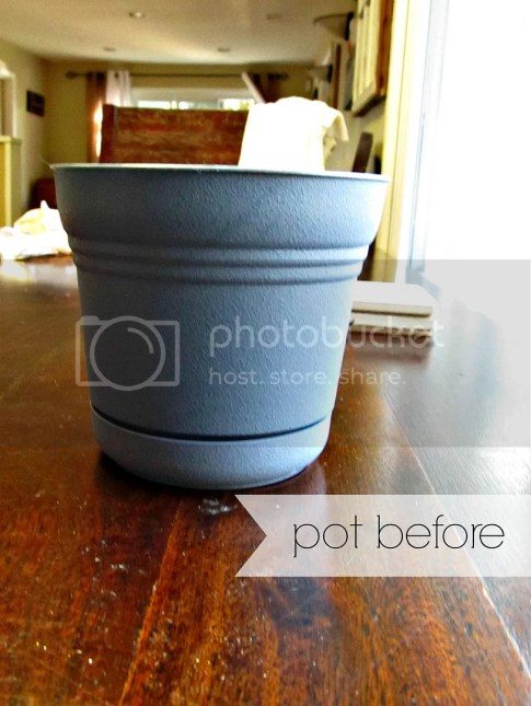 pot before