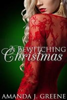 A Bewitching Christmas cover