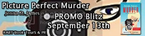 Picture Perfect Murder Banner