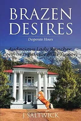 Brazen Desires: Desperate Hours cover