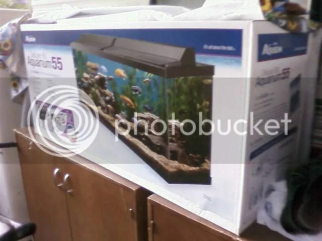 55 gallon fish tank kit petco - AquaBowl: Review: Aqueon 55