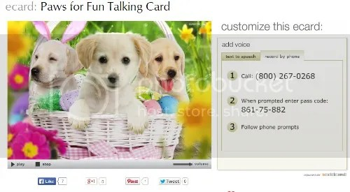American greeting ecards fast fun and memorable photo americangreetingscardzps225ffdceg m4hsunfo