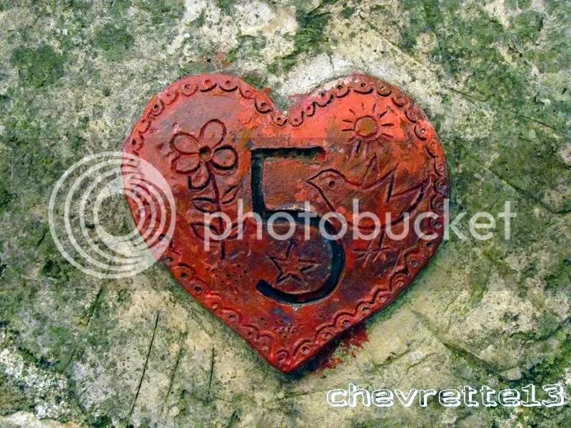 https://i1.wp.com/i1252.photobucket.com/albums/hh578/chevrette13/communaut/IMG_2567Copier_zps331e0e62.jpg