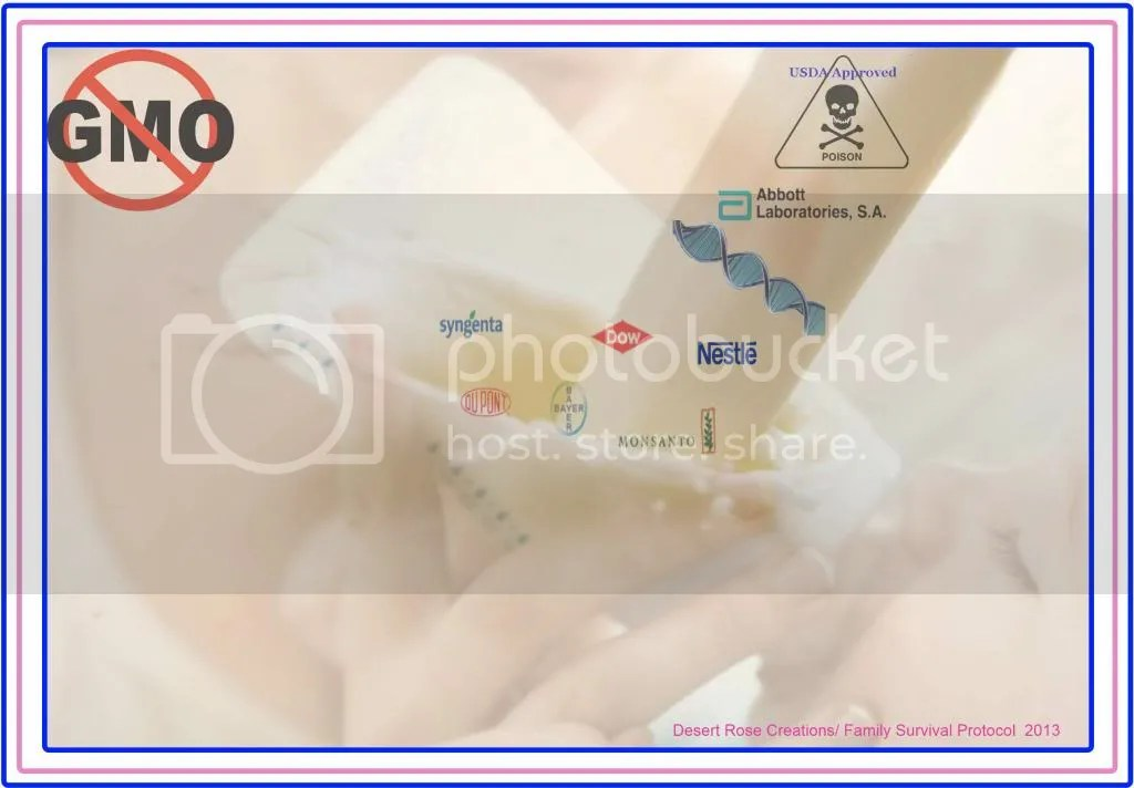 NO to GMO in baby formula photo NoGMOinbabyformula_zps0593e7fd.jpg