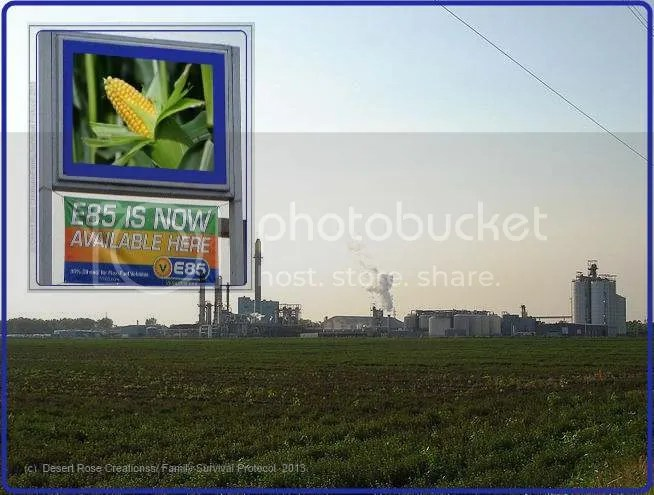(C) Desert Rose Creations/Family Survival Protocol  2013Ethanol Sign 2 photo ethanolsign2_zps0d43f94d.jpg