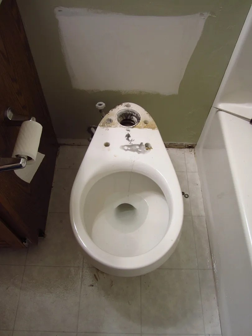 How to Remove an Old Toilet and Install a New One/HomeStagingBloomingtonIL