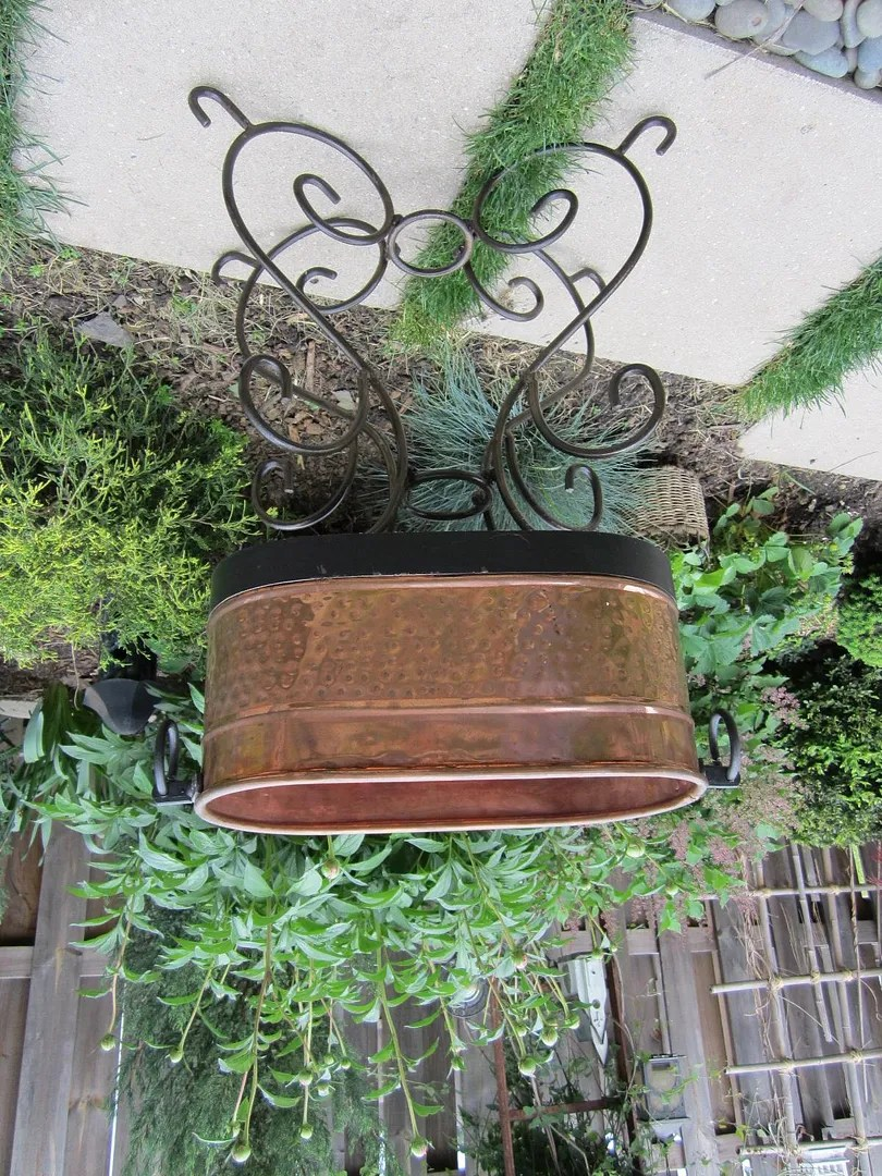 Flower Pots on a Budget / MyUrbanGardenOasis