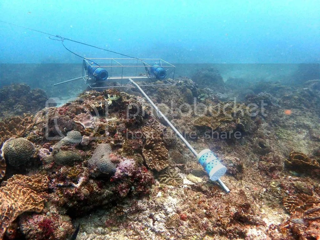 photo iSi_stereo-BRUVs on the reef_sml_zpsajdxlewk.jpg