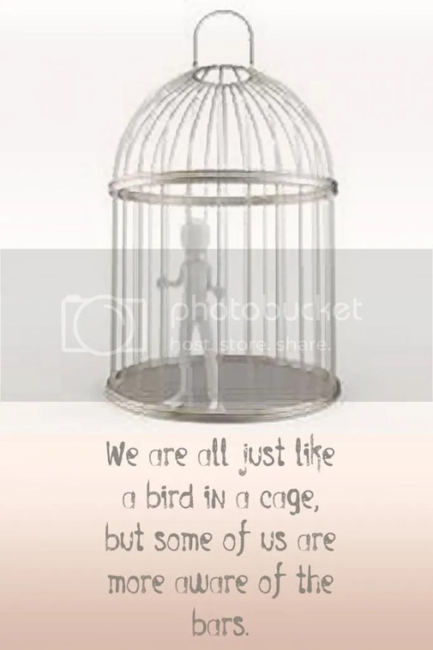 We are all just like a bird in a cage, but some of us are more aware of the bars. Quote on blog of J Lenni Dorner
