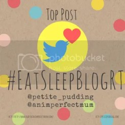 Petite Pudding