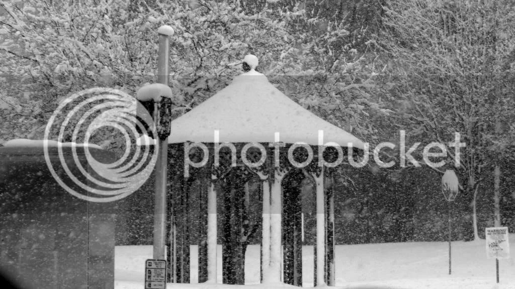 B'nw snow fp 240313 target photo DSC02313-1.jpg