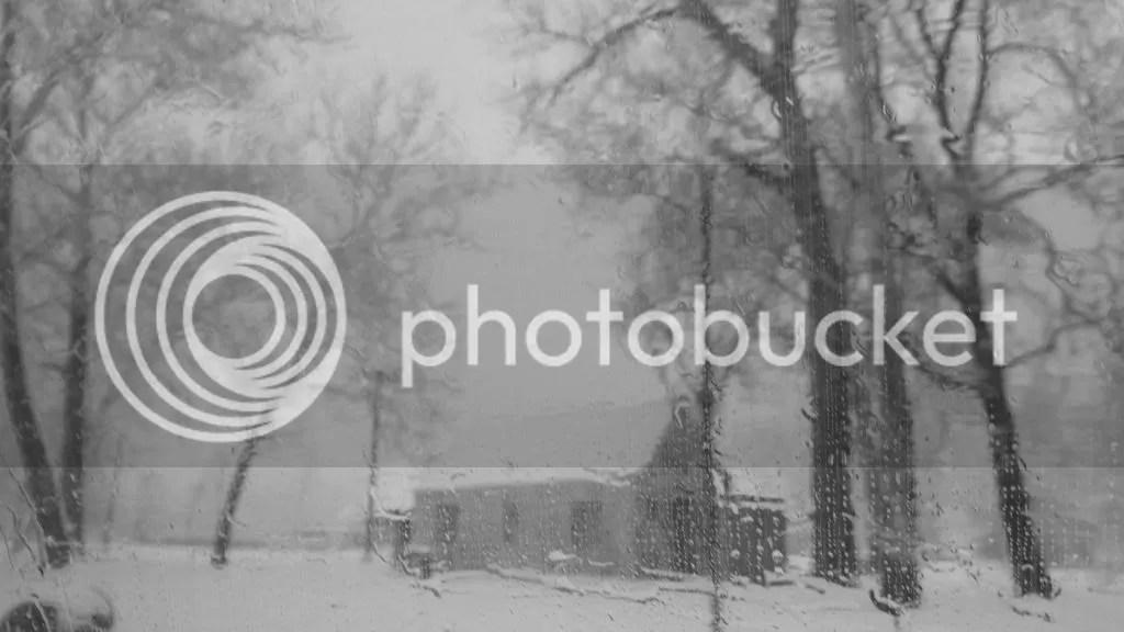 house 240313 snow photo DSC02353.jpg