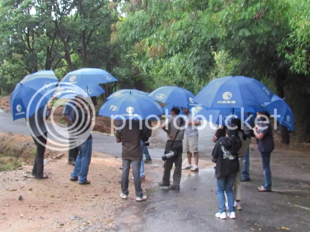 umbrellas bg 090812