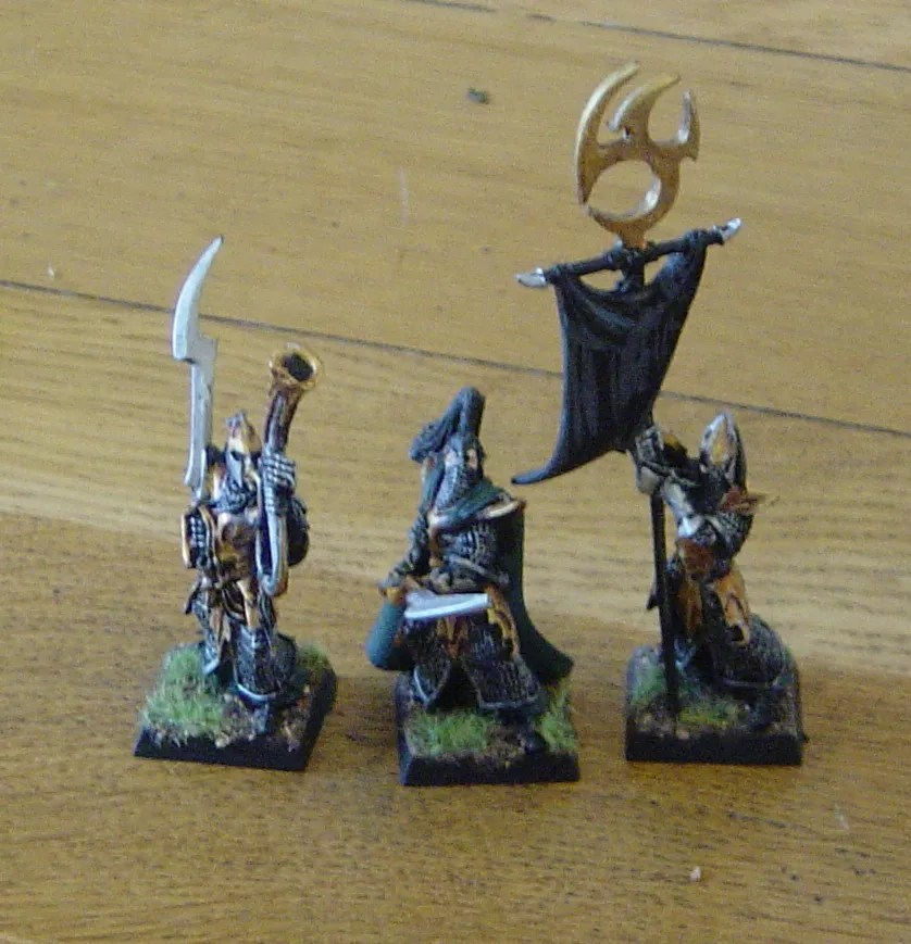 WHFB: Dark Elf Executioners (2/3)