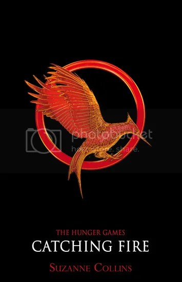 Image result for catching fire book