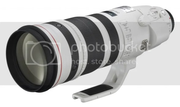EF 200-400mm f/4L IS 1.4x