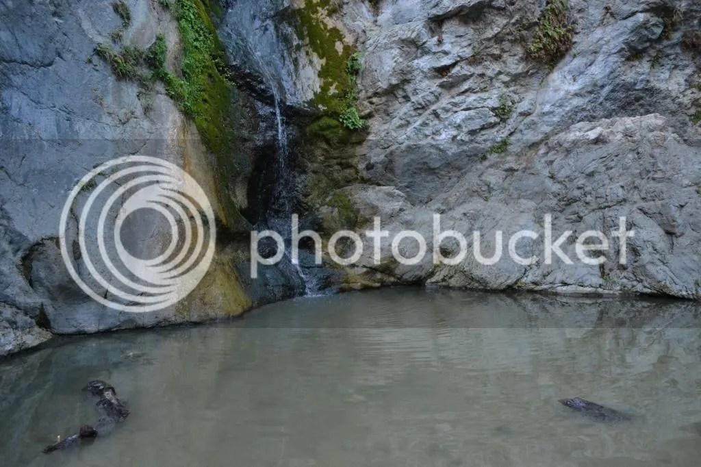 photo CF7608F5-61B0-4905-AA99-D7325C4F9C85_zps8dqax4qt.jpg