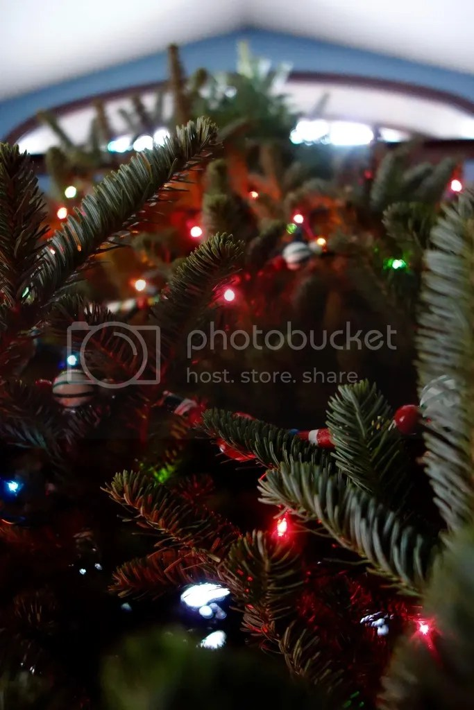 photo Christmas Tree 4_zpsst0apabi.jpg