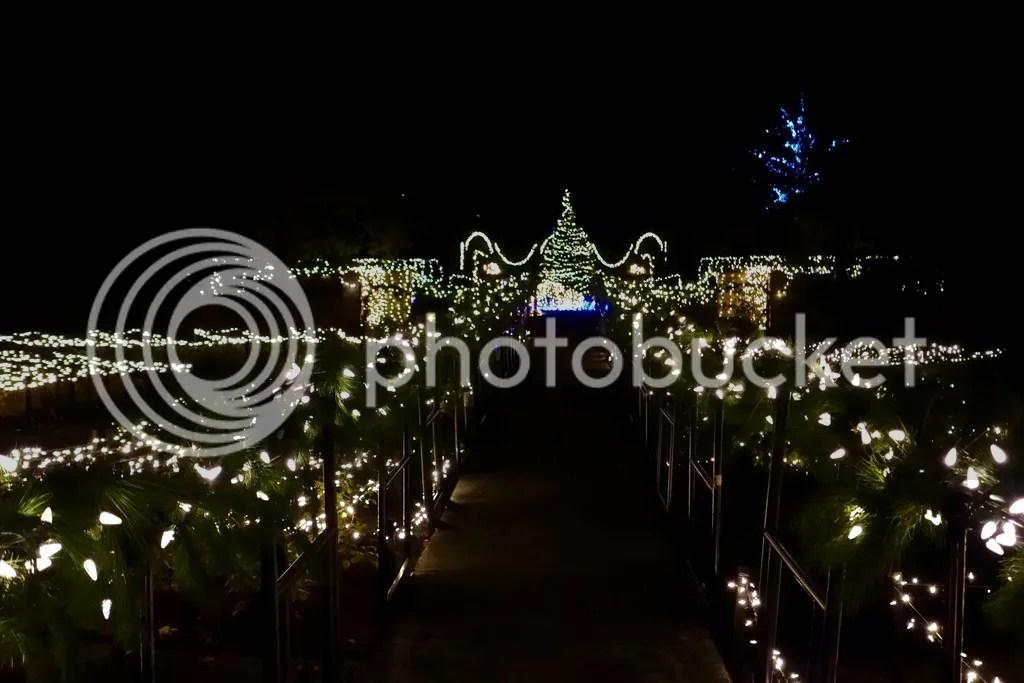 photo Ford House Christmas 11_zpscmrx4q2q.jpg