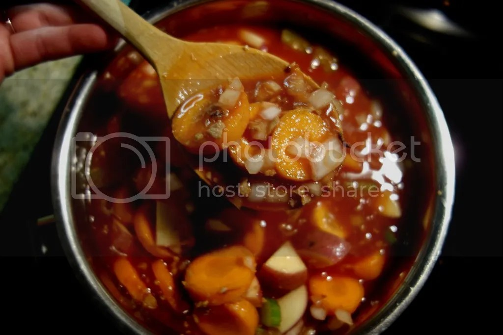 photo Easy Fall Stew 4_zpsbjomvk0a.jpg