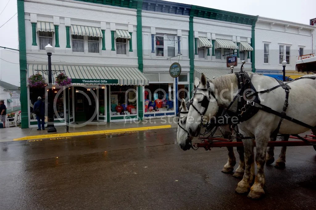 photo Horse and Carriage Mackinac_zpswkoaty4g.jpg