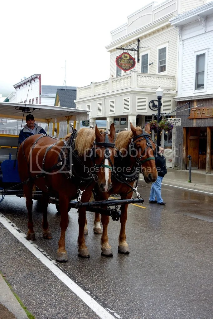 photo Mackinac Island Shuttle_zpsf1kypb3c.jpg
