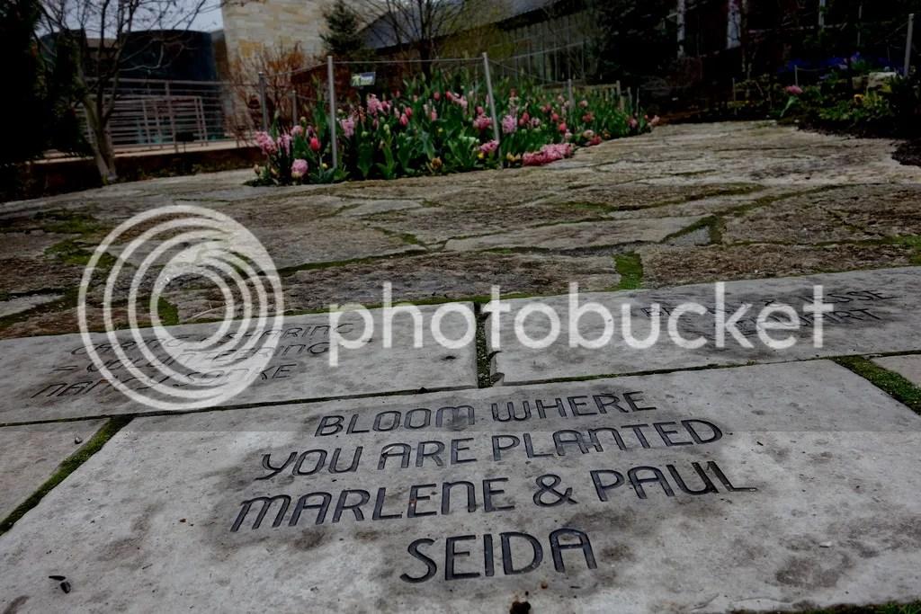 photo Meijer Gardens Quotes_zpsvu2ppkdw.jpg