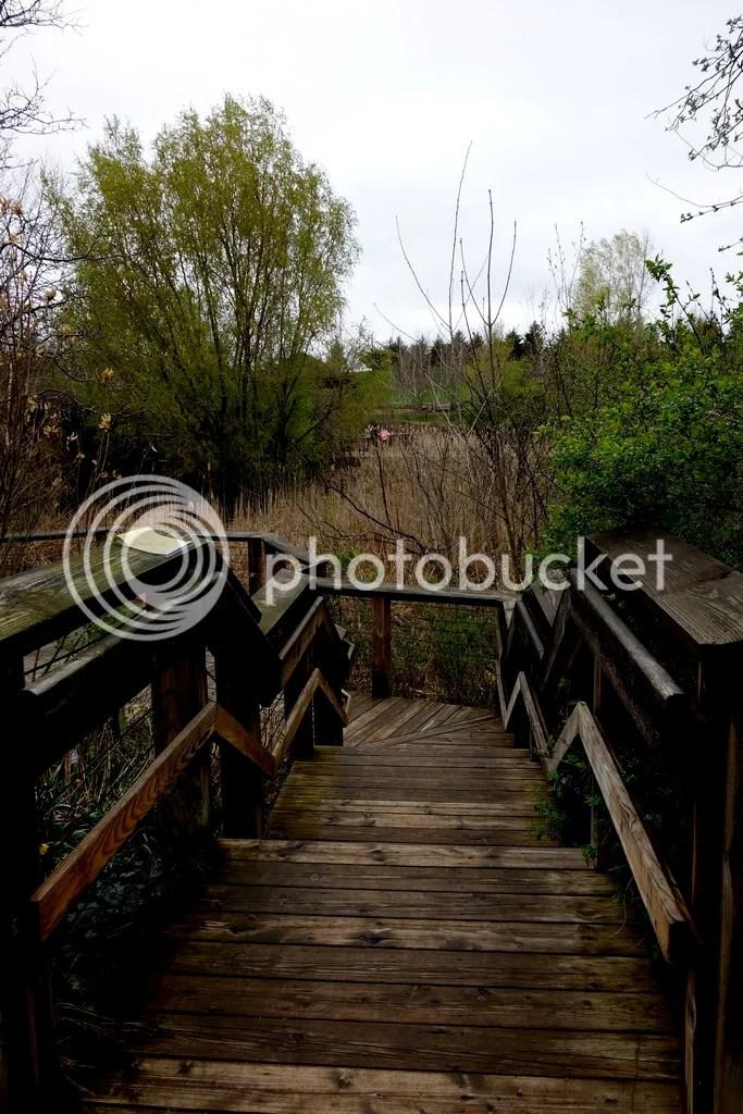 photo Meijer Gardens Wooden Stairs_zpsn4hx3nng.jpg