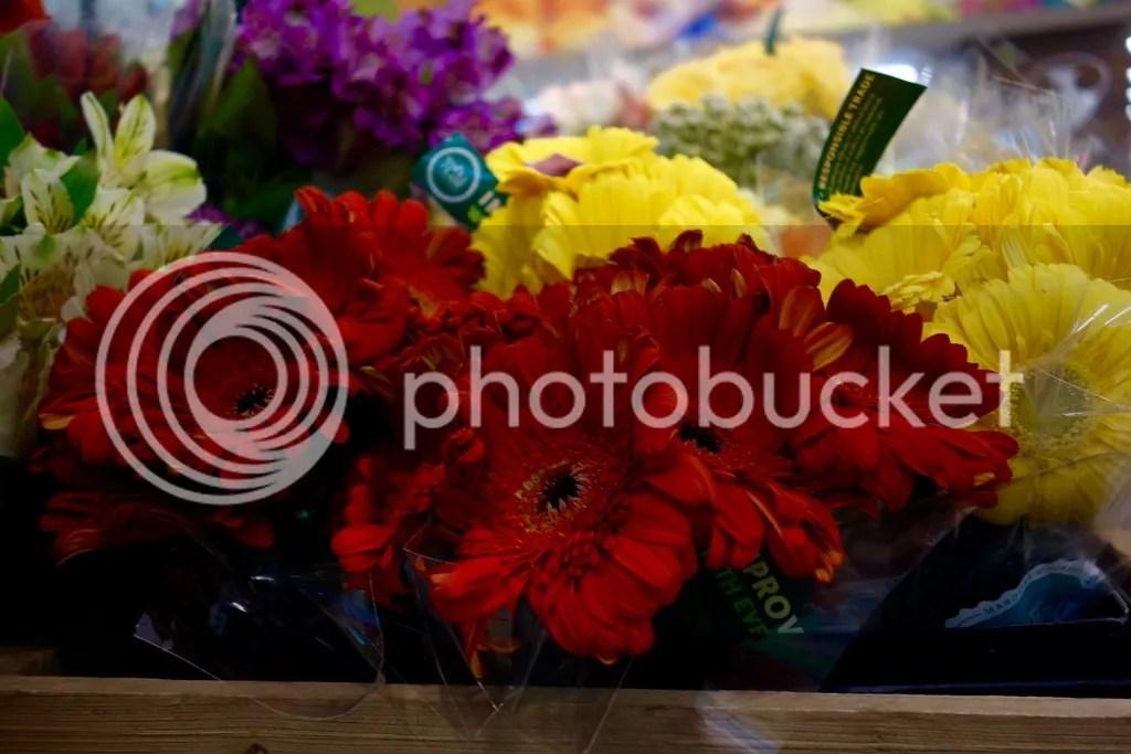 photo Whole Foods Flowers_zps2dsekopv.jpg