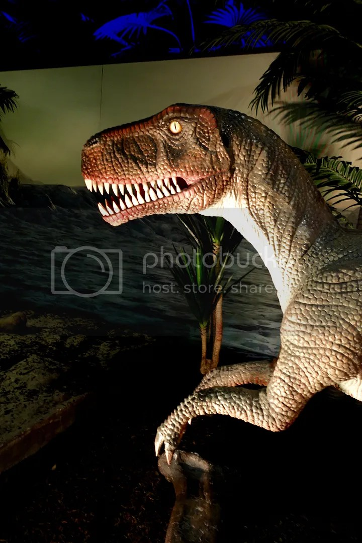 photo Museum of Natural Sciences Dinosaur Exhibit_zpsjq6paj1w.jpg