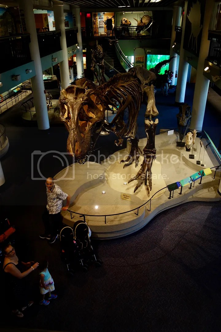 photo Museum of Natural Sciences Dinosaur_zpshwiaejlq.jpg