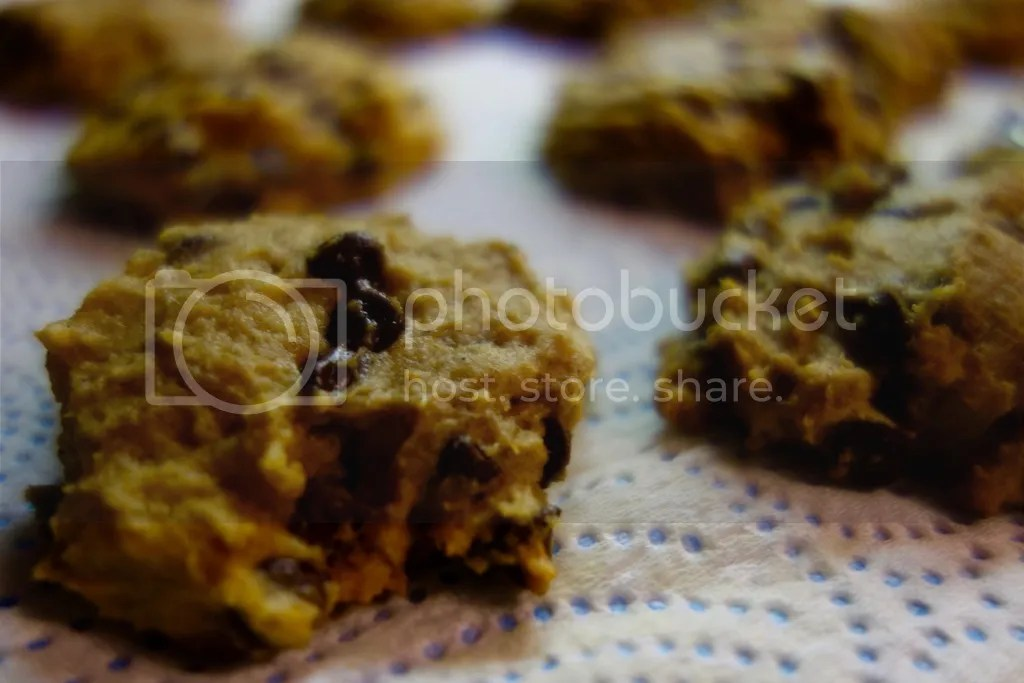 photo Pumpkin Chocolate Chip Cookies 10_zpsw8yubfqj.jpg